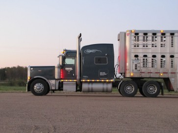 livestock hauler 2