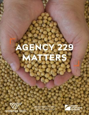 Agency 229