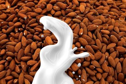 almond-milk-1623610_1280