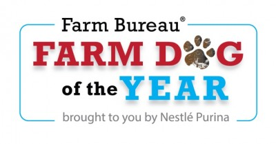 Farm Dog of the Year